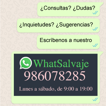 WHATSALVAJE